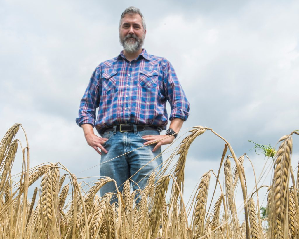 Man stands in barley.