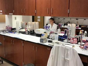Student in a laboratory