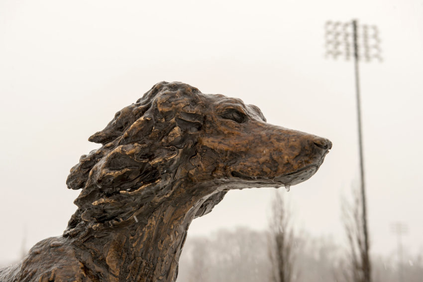 Saluki sculpture